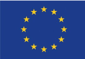 EU flag - Home